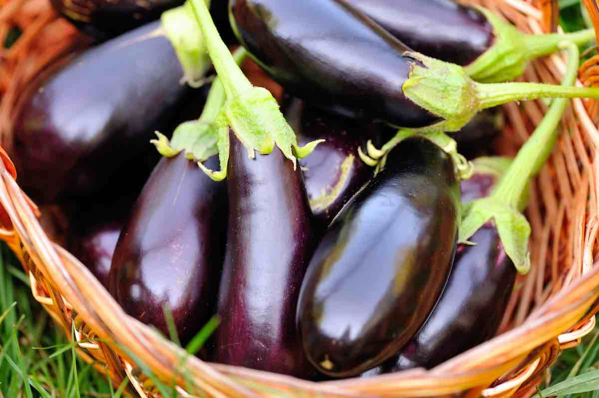 How to prepare eggplant for baking